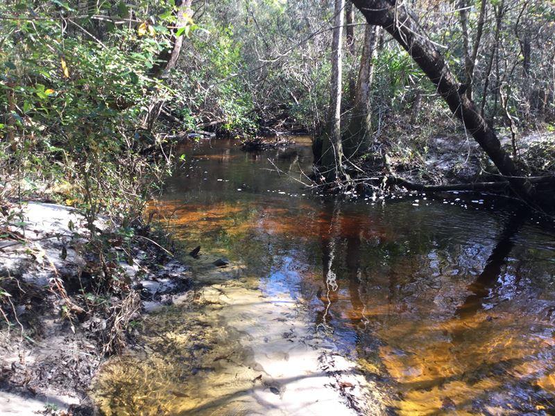 Bridge Creek Tract : Ponce De Leon : Holmes County : Florida