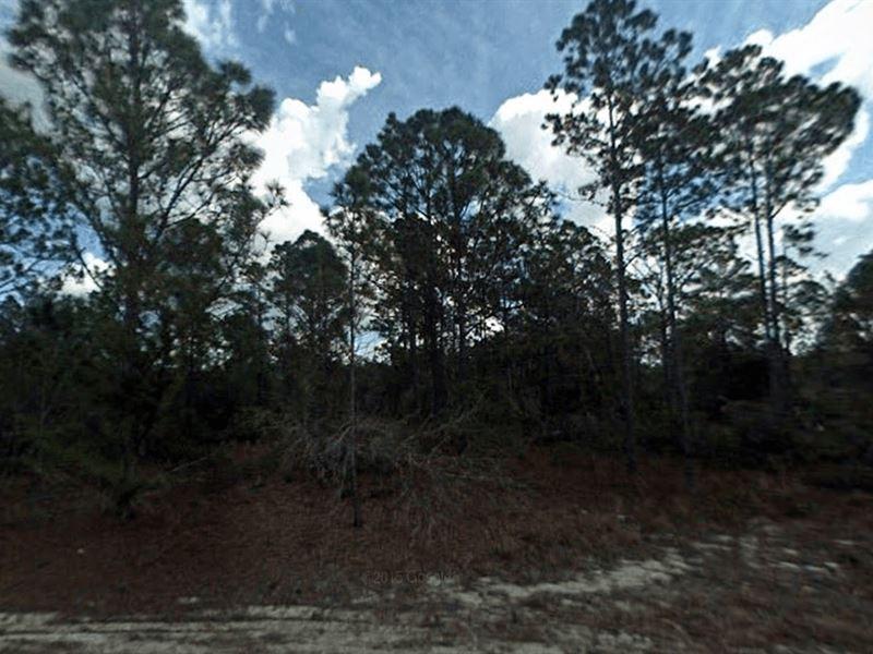Lake Placid Vacant Lot For Sale : Lake Placid : Highlands County : Florida