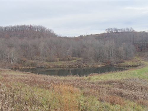 Cr 120 - 64 Acres : Newcomerstown : Coshocton County : Ohio