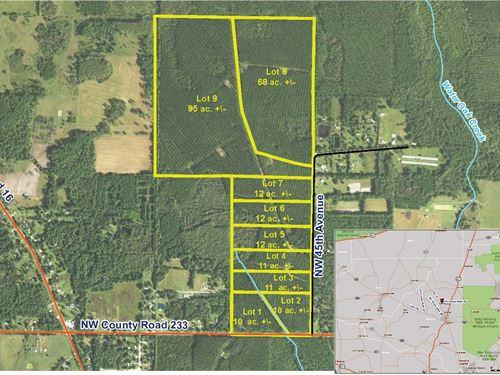 Parcel 5 Oak Creek 12 Acres : Starke : Bradford County : Florida