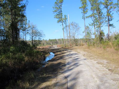 Parcel 9 Oak Creek 95 Acres : Starke : Bradford County : Florida