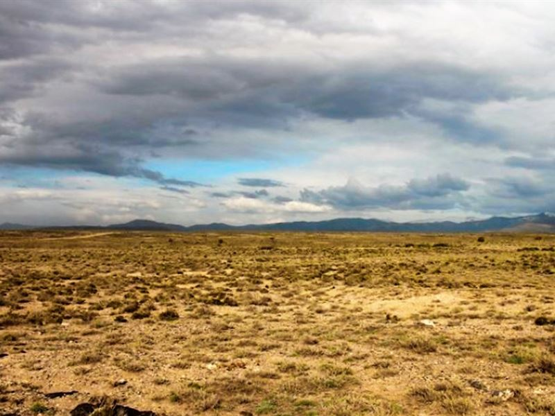 Own 5 Acres For Less Than A Car Pay : San Luis : Costilla County : Colorado