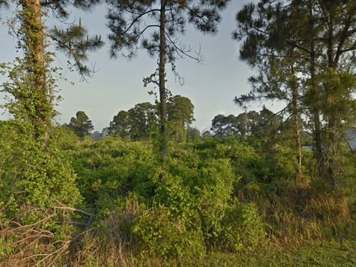 Vacant Land Owner Finance : Palm Bay : Brevard County : Florida