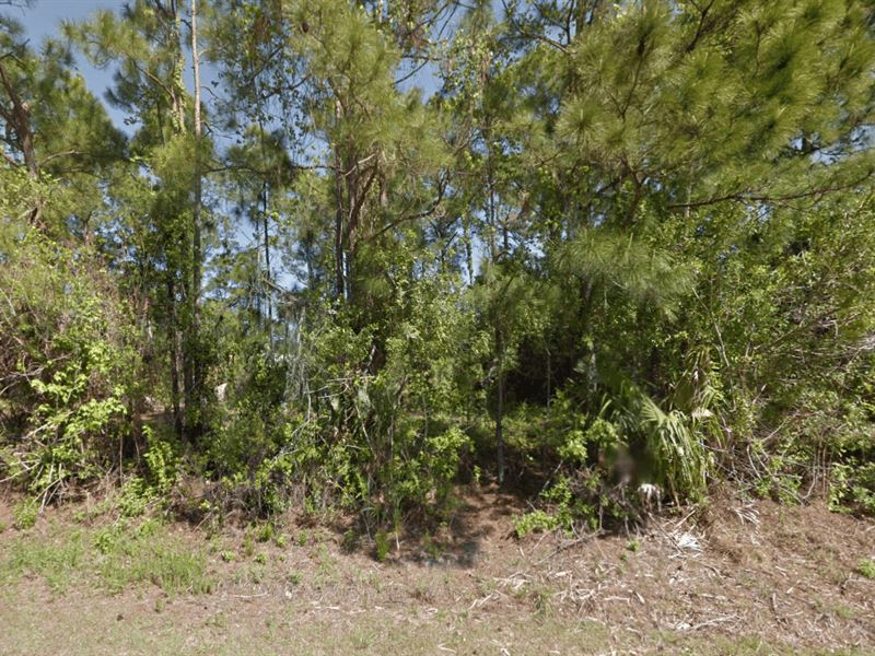 Owner Finance Lot In Palm Bay : Palm Bay : Brevard County : Florida