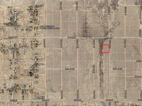.95 Acres In Lake Los Angeles, CA : Lake Los Angeles : Los Angeles County : California