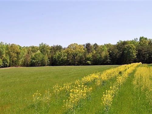 Farm/Development Tract : Honea Path : Greenville County : South Carolina