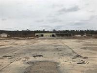 144.3 +/- Acres, Alabama : Peterman : Monroe County : Alabama
