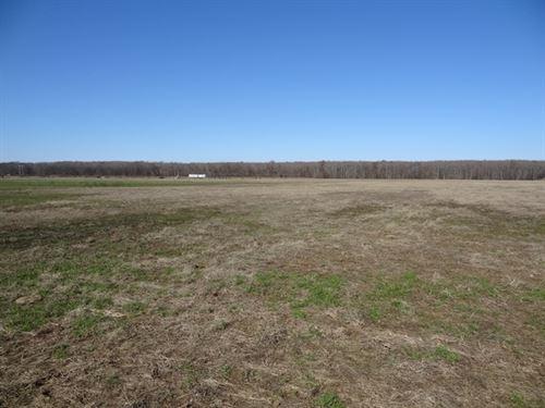 72 Ml Ac Farm High Development Pot. : Scott : Lonoke County : Arkansas