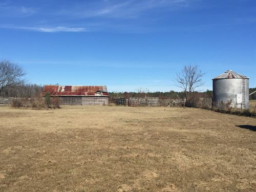 Odum Farms - 80 Acres : Jesup : Wayne County : Georgia