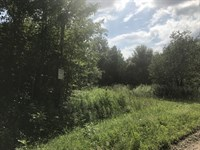 Affordable Tug Hill Acreage : Constableville : Lewis County : New York