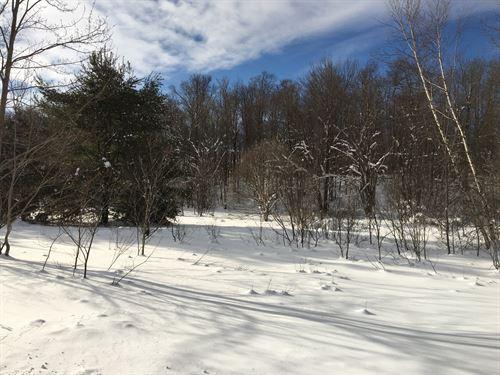 Tug Hill Meadows : Annsville : Oneida County : New York