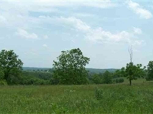 Missouri, Texas County, 6.65 Acres : Houston : Texas County : Missouri