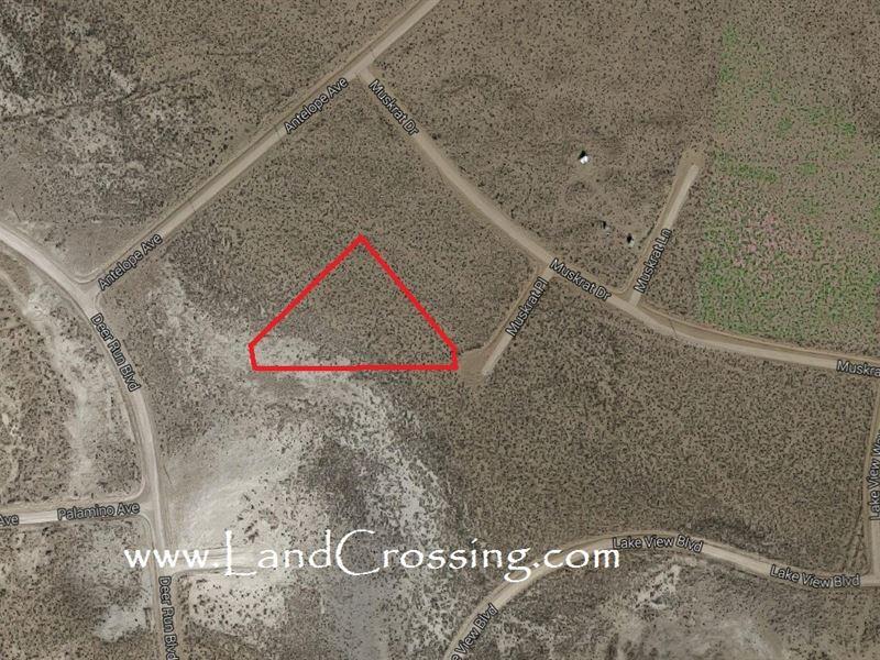 2+ Acres In Colorado,Ready To Build : Alamosa : Alamosa County : Colorado