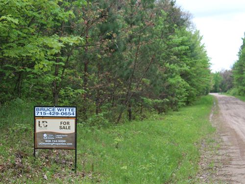 Wooded Property In Mfl Closed : Merrillan : Jackson County : Wisconsin