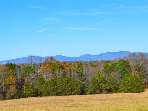 50 Acres Of Rolling Pasture : Inman : Spartanburg County : South Carolina