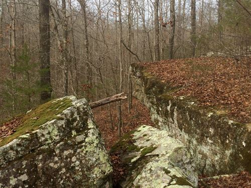Timberland And Recreational Tract : Ida : Cleburne County : Arkansas