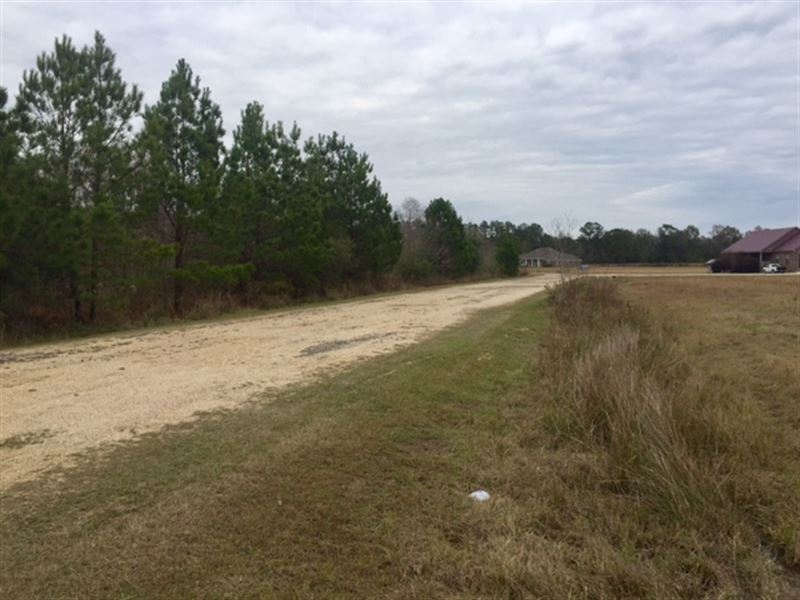 3.16 Acre Lot - Will Divide : Picayune : Pearl River County : Mississippi