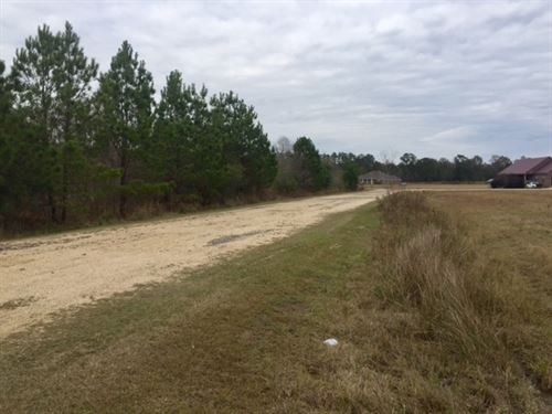 3.16 Acre Lot- Will Divide : Picayune : Pearl River County : Mississippi