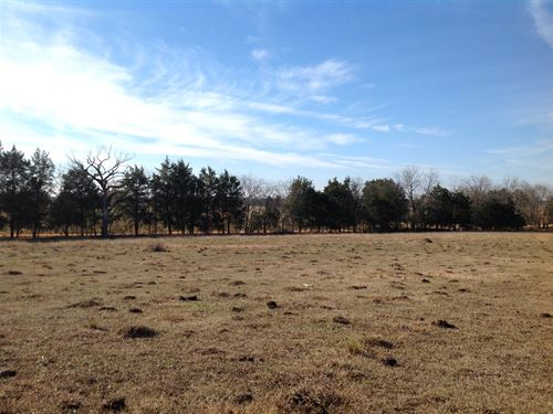 101 Acres Pasture : Marion Junction : Dallas County : Alabama