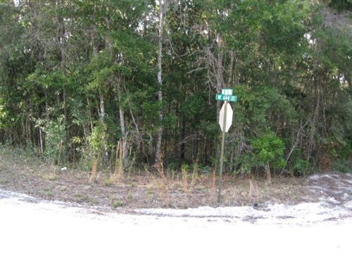 2.02 Wooded Lot 773052 : Old Town : Dixie County : Florida