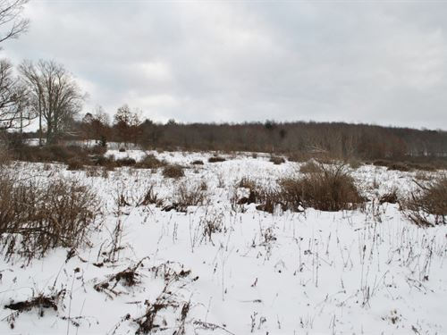 37 Acres Farmland Near Binghamton : Barker : Broome County : New York