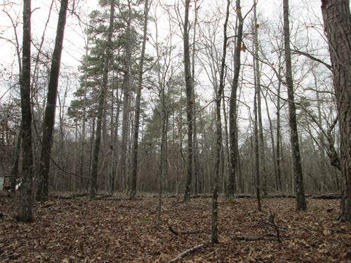 Bowen Hill Estate Tract : Haddock : Jones County : Georgia