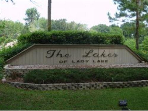 Lakes Of Lady Lake : Lady Lake : Lake County : Florida