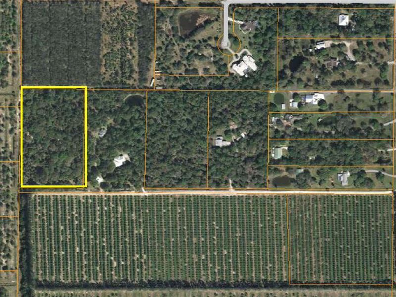 Secluded, Wooded Estate Parcel : Fort Pierce : Saint Lucie County : Florida