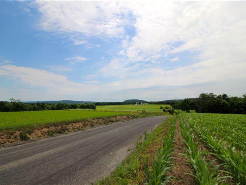 38+/- Acres Land, Building Lot : Millville : Columbia County : Pennsylvania