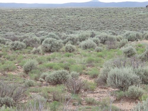 40 Acres Vacant Land/Ranch/Farm : Thatcher Pinon Canyon : Las Animas County : Colorado
