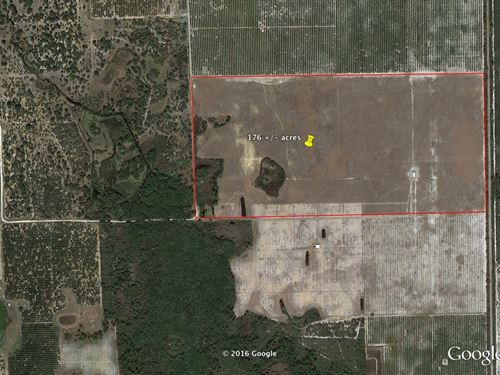 Great For Citrus Grove : Lake Placid : Highlands County : Florida