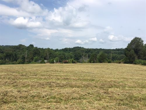 Beautiful Vacant Land In Tracts : Brown : Edmonson County : Kentucky