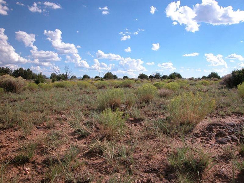 5 Acres Near Winslow Az : Wnslow : Coconino County : Arizona