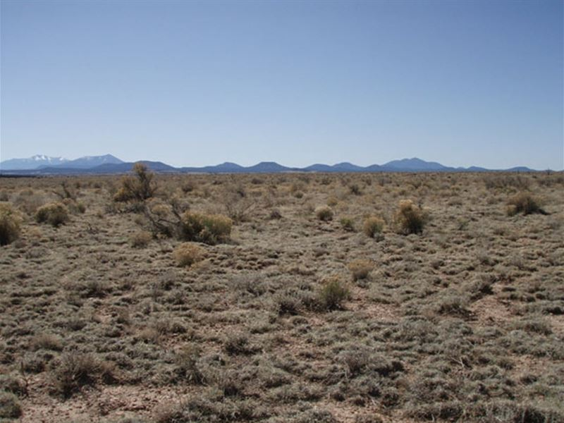 1.05 Acres In Grand Canyon Estates : Williams : Coconino County : Arizona