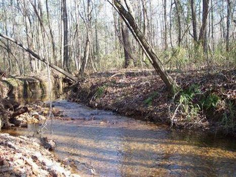 7+ Acre Minifarm/Homesite - Lot 10 : Alexander City : Tallapoosa County : Alabama