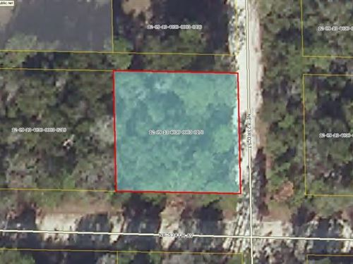 Nice Corner Lot- 0.24 Ac 773060 : Old Town : Dixie County : Florida