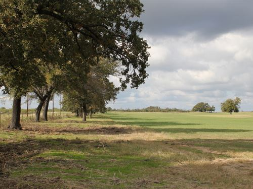 Panoramic Prime Acreage : Stephenville : Erath County : Texas