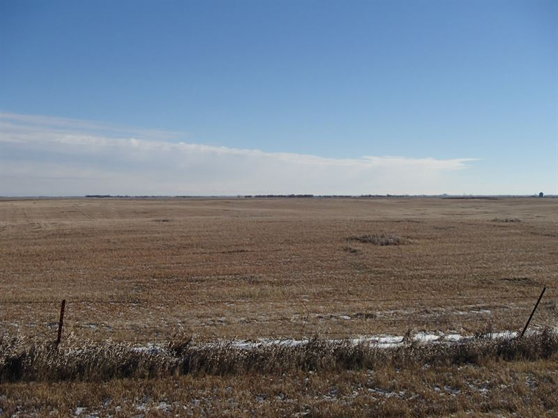 South Dakota Farmland : Ipswich : Edmunds County : South Dakota