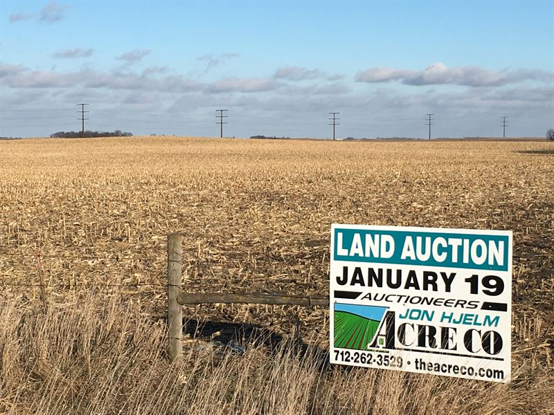Great Looking All Tillable Farm : Spencer : Clay County : Iowa