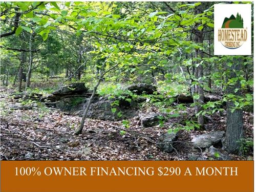 Quiet 9 Acres In Country With Creek : Ava : Douglas County : Missouri