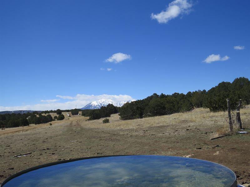 37 Silver Spurs Ranch : Walsenburg : Huerfano County : Colorado