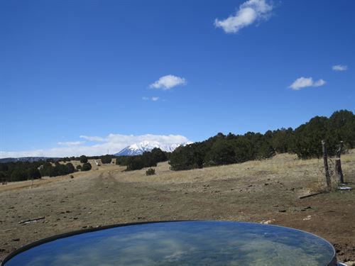 37 Silver Spurs Ranch : Walsenburg : Huerfano County : Colorado