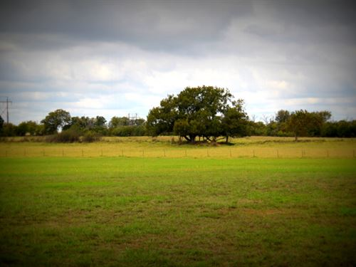 Prime Acreage With Pond : Stephenville : Erath County : Texas