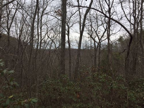 5.35+/- Acres With Pristine Views : Monteagle : Grundy County : Tennessee