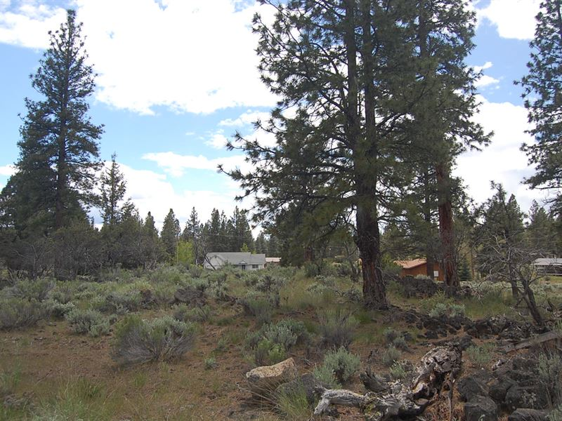 Scenic Residential Lot : Susan : Lassen County : California