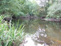 Raised Cabin On Brier Creek : Hiltonia : Screven County : Georgia