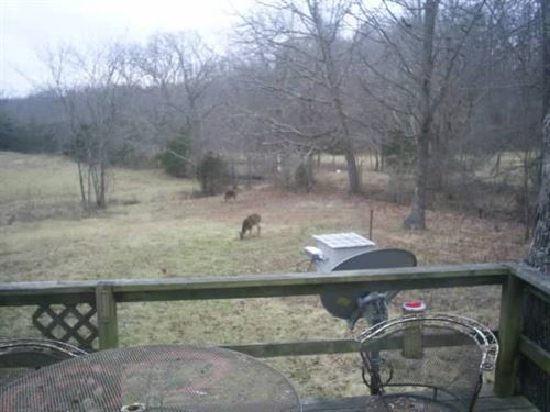 Very Private Ozark Hide-A-Way : Willow Springs : Howell County : Missouri