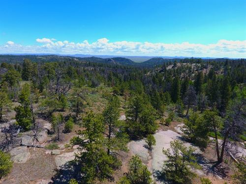 35 Acres In Shared Amenity Ranch : Tie Siding : Albany County : Wyoming