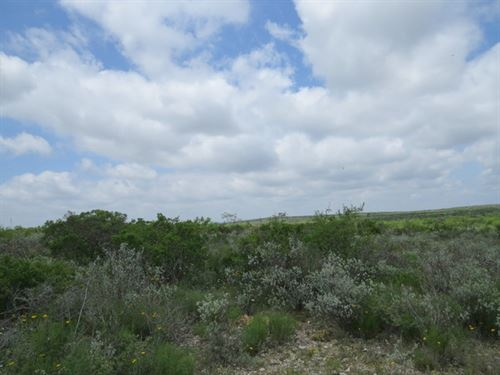 Wolf Springs Ranch 32 : Comstock : Val Verde County : Texas