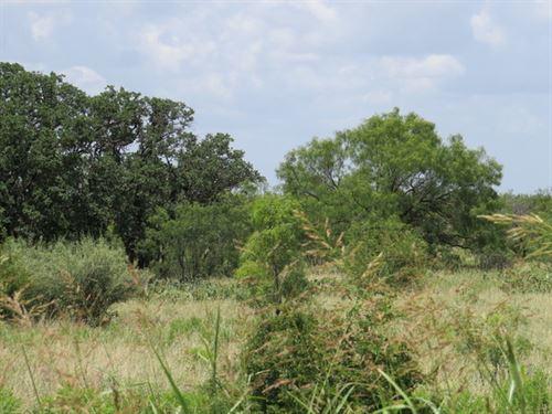 Mustang Creek 19 : Eden : Concho County : Texas